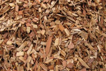 Tree chipping / firewood
